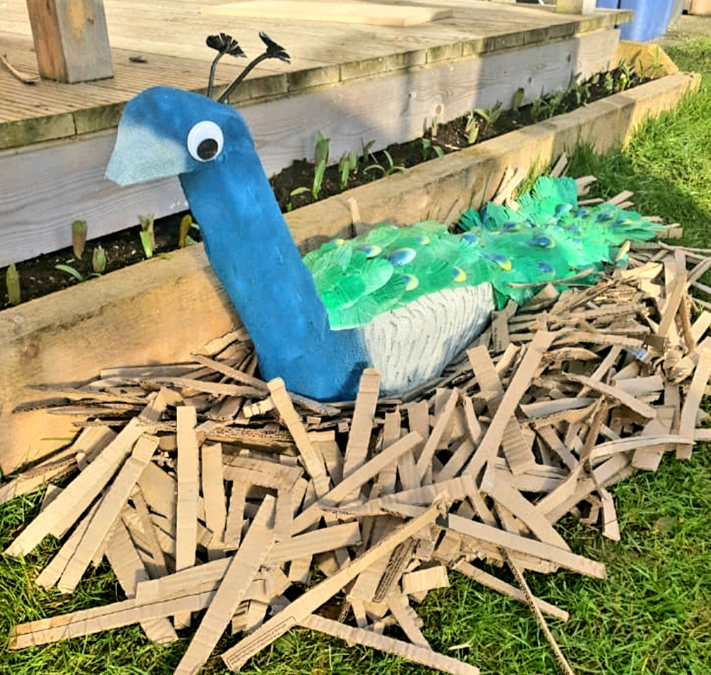 Picture of peacock entry for Bin smART competition