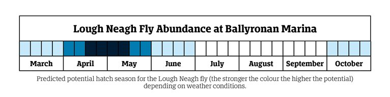 Lough Neagh Fly Abundance monthly indicator